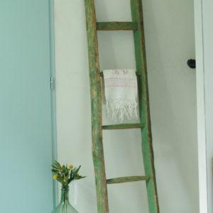 Très chouette échelle ancienne de ferme en bois peinte au coloris vert.