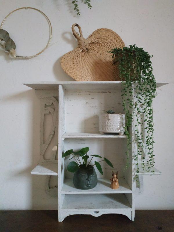 Encombrée de belles plantes tombantes, cactées et petits objets de curiosité, cette étagère deviendra un petit cabinet de curiosités au look tendre et authentique.