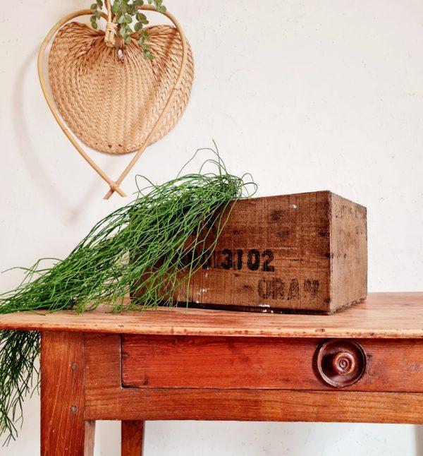 Cette boîte en bois fut retrouvée dans un vieil atelier, une oubliée.