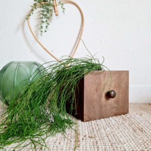 Ancien tiroir ou boîte d'atelier en bois qui deviendra vite un contenant vintage au look singulier et charmant.